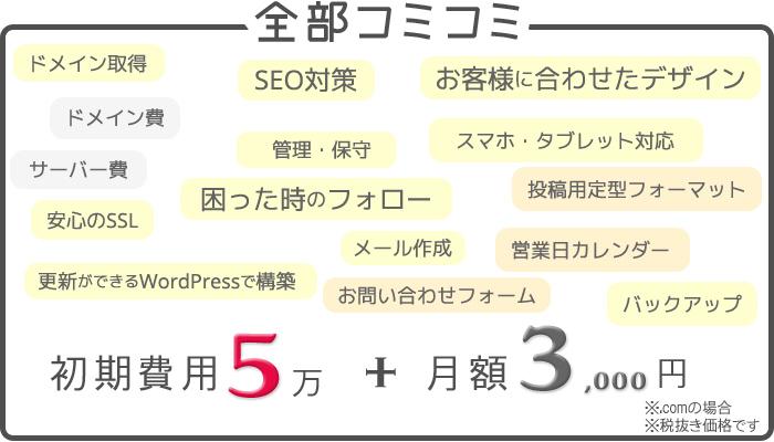 全部込み込み 初期費用5万 月額3千円のみ!